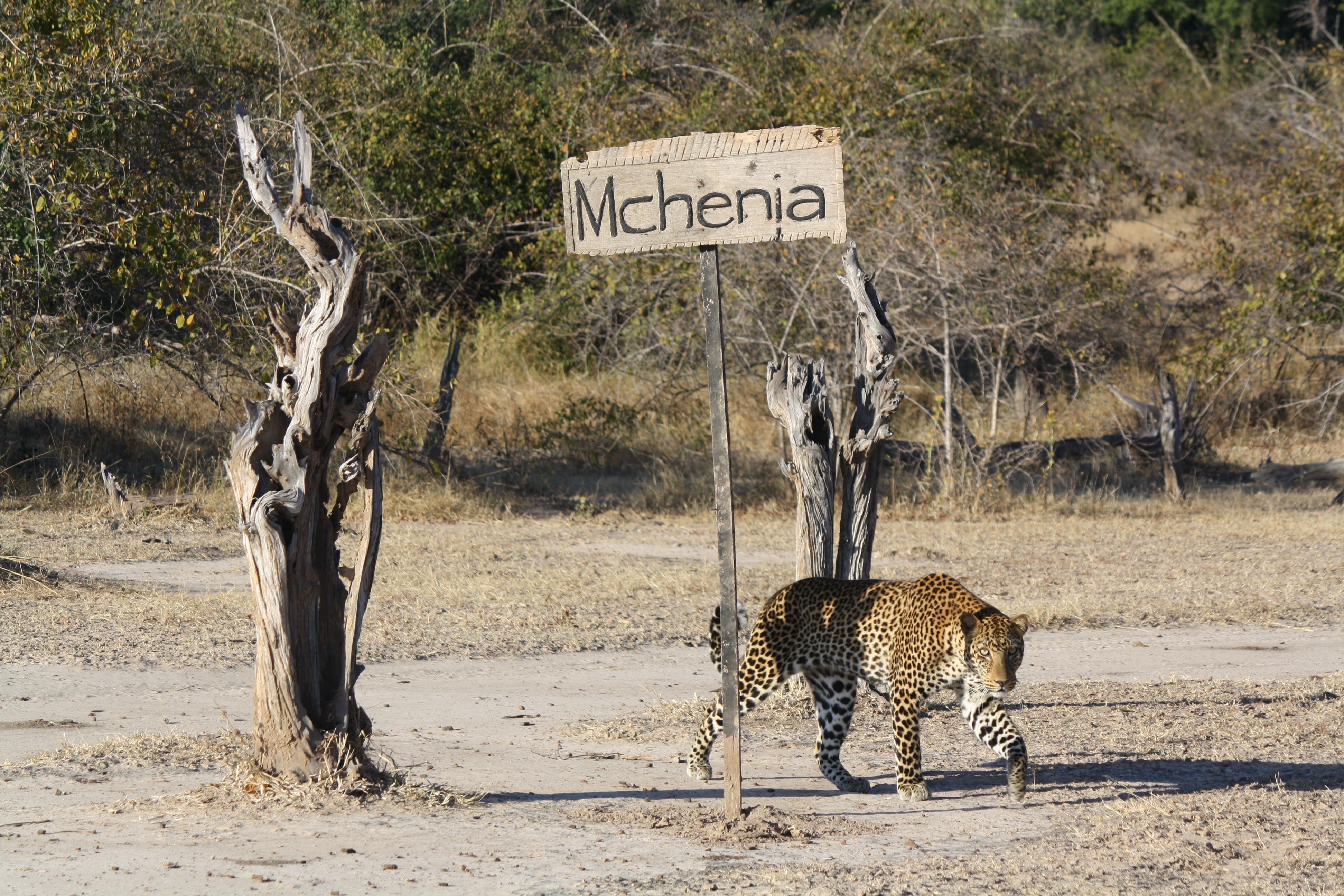 Zambia,-Mchenja-Camp-exterior