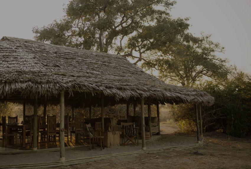 Kigelia-Ruaha-Tanzania-Hero-Tinted