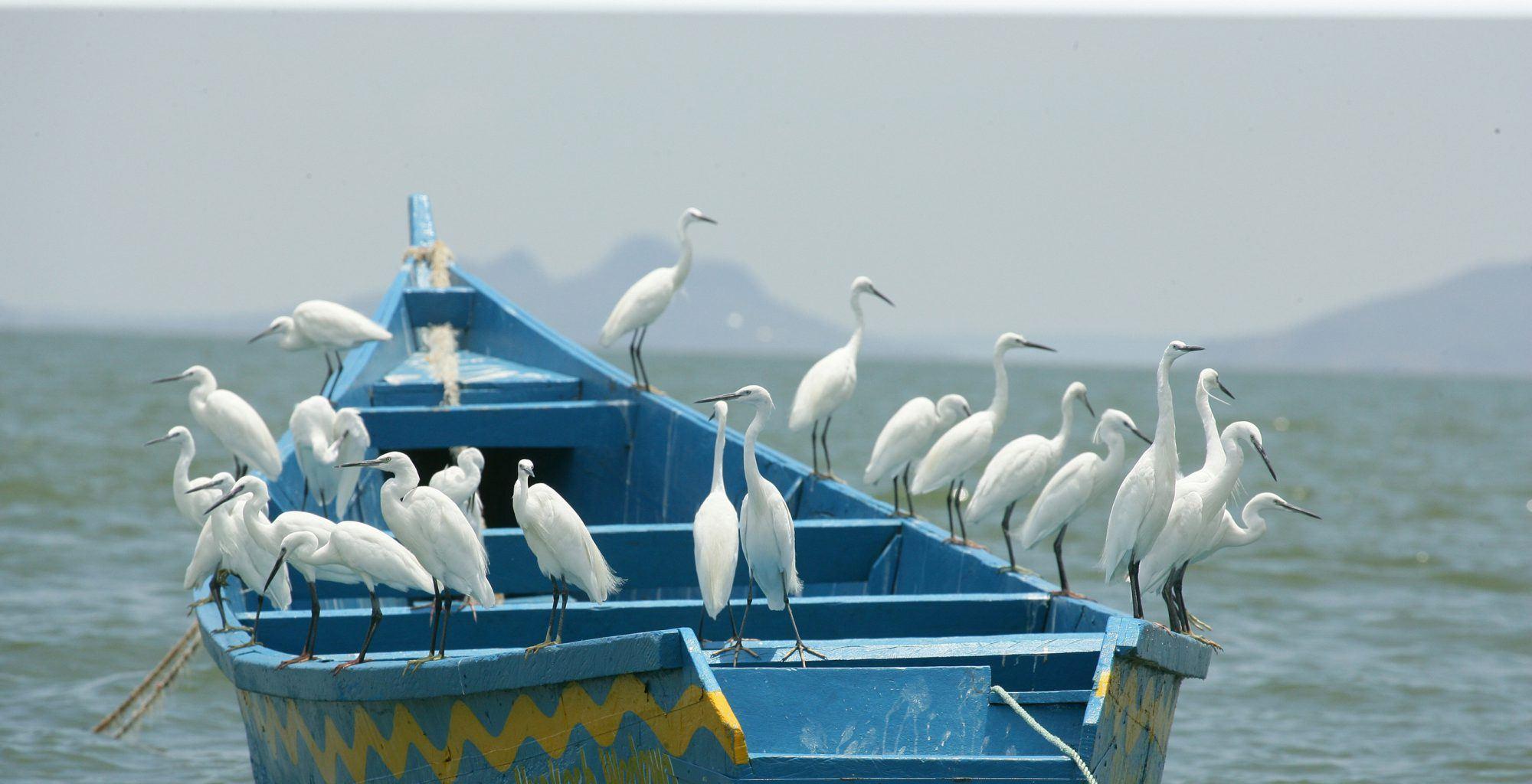 Uganda-Lake-Victoria-Boat