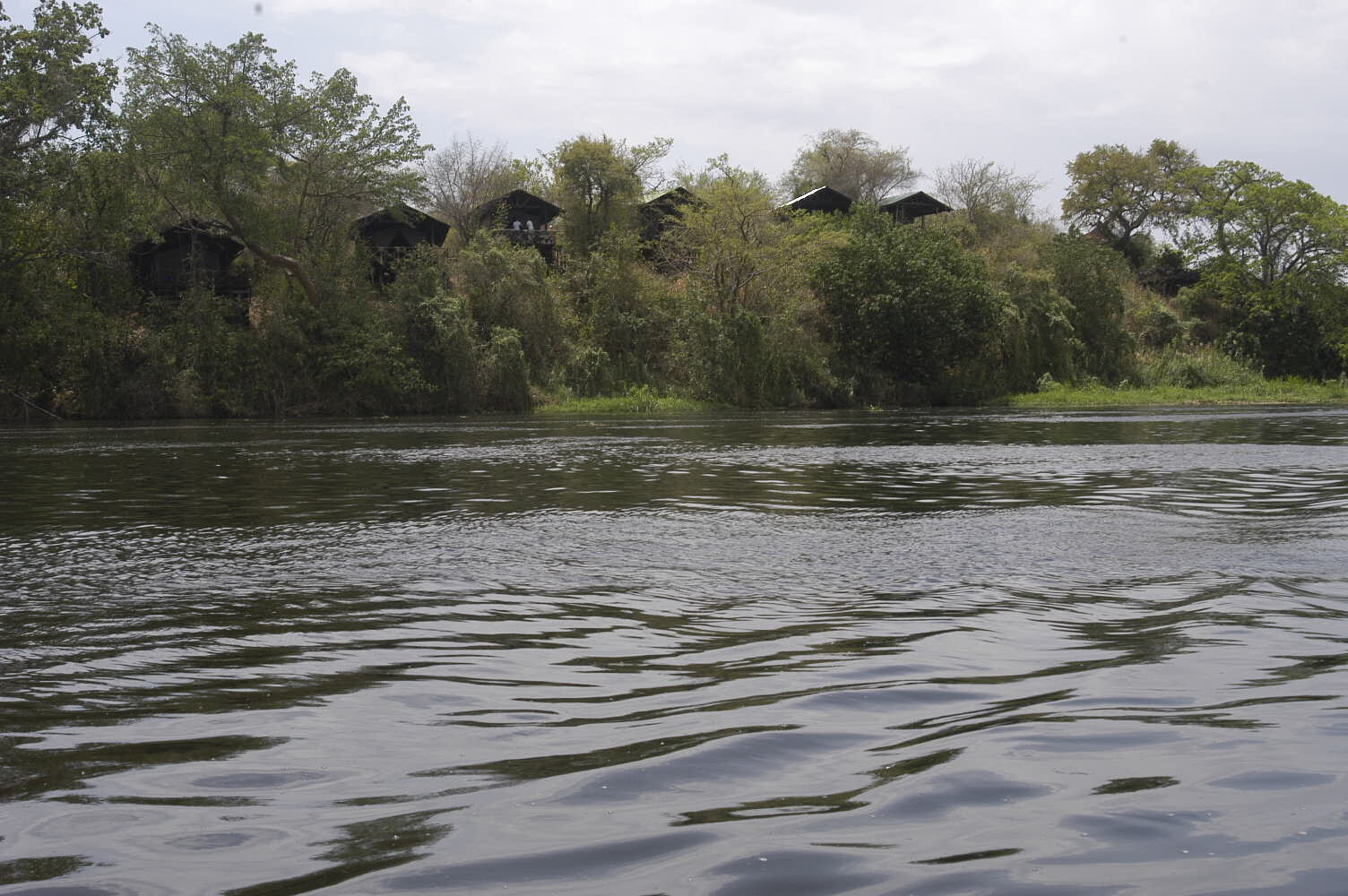 Nile Safari Lodge view from River