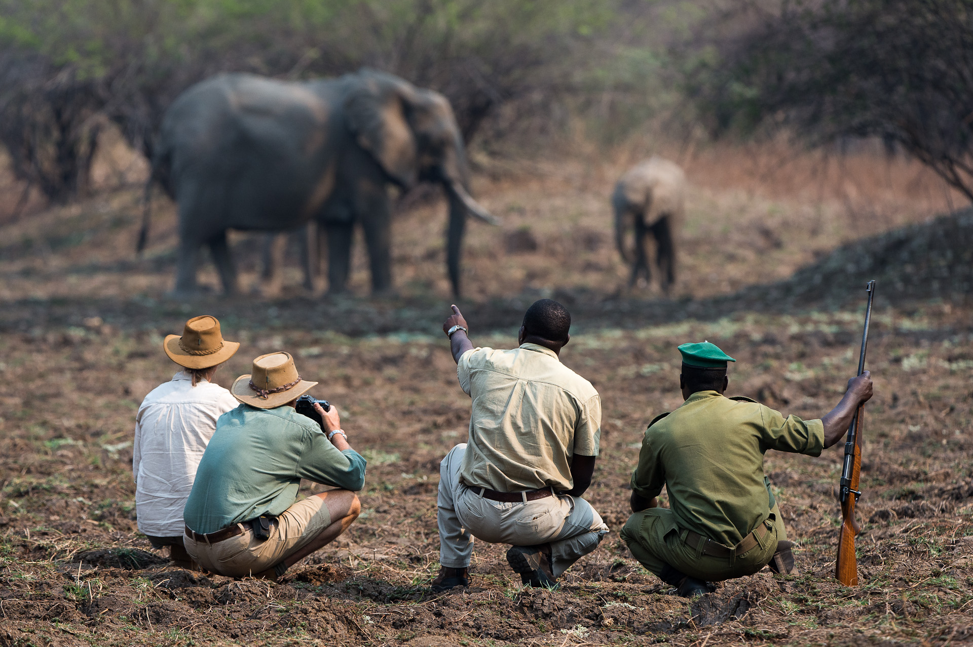 Tena-Tena-Safari-Camp-Zambia-Wildlife