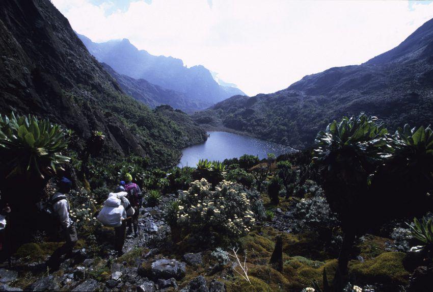 Uganda-Rwenzori-Mountains-Valley