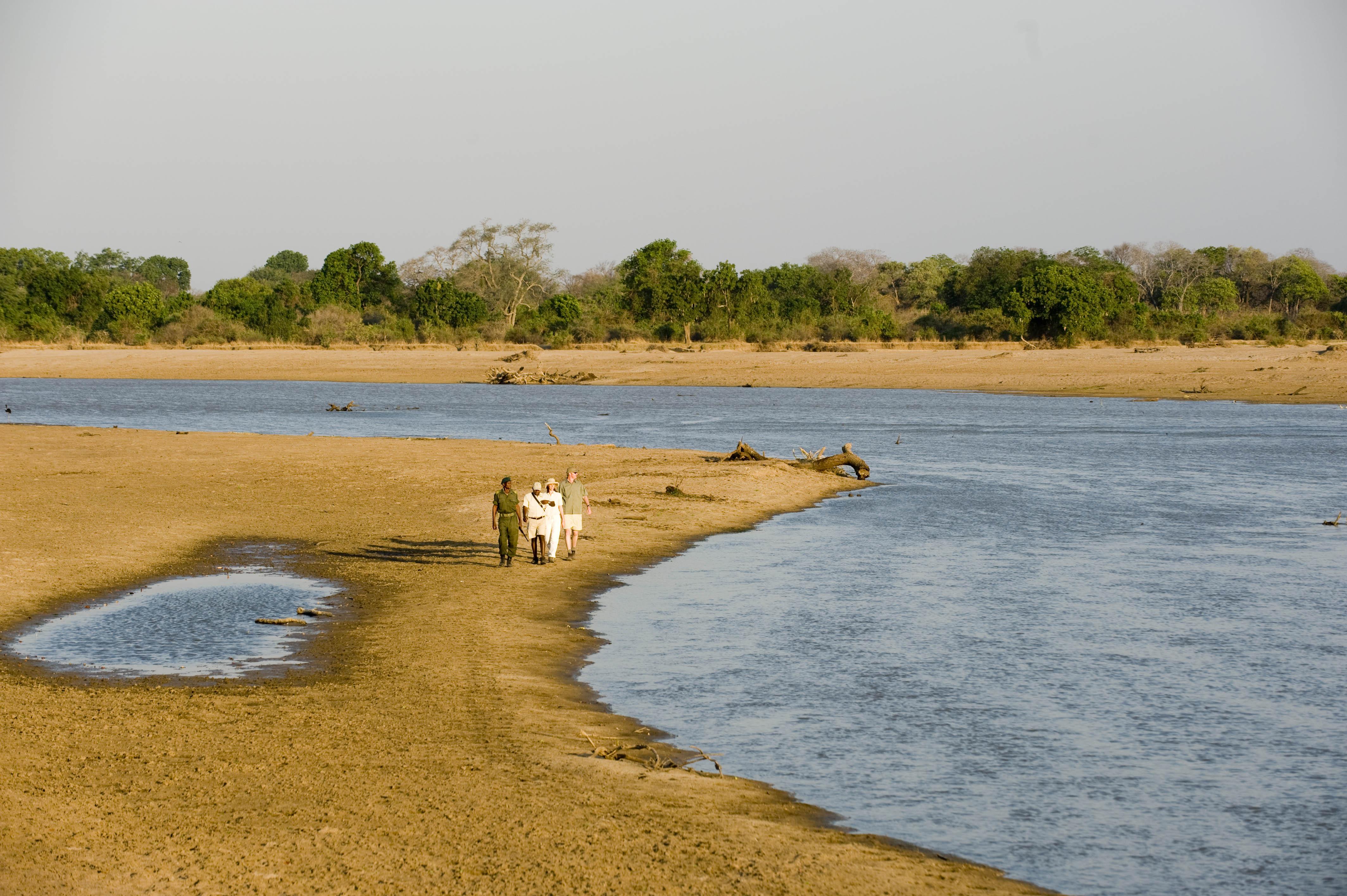 Puku-Ridge-Camp-Zambia wildlife