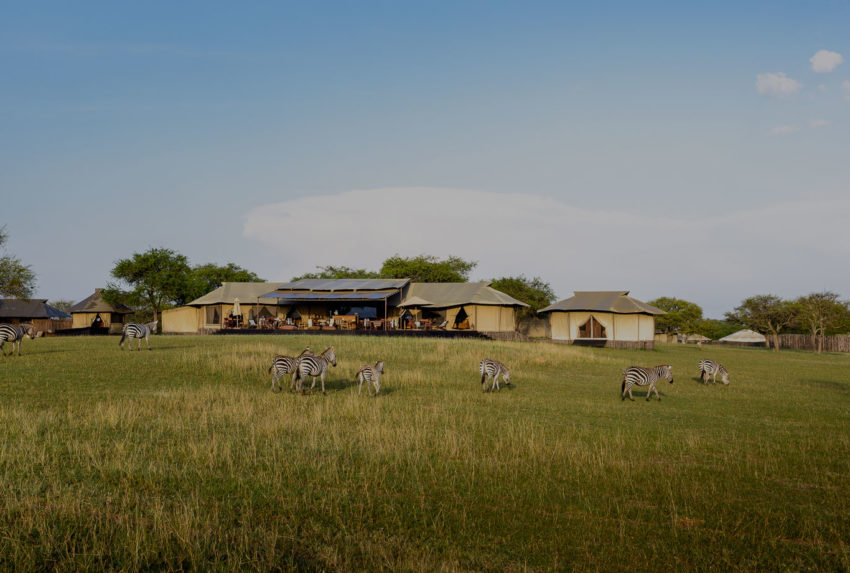 Sabora-Tented-Camp-Tinted-Hero