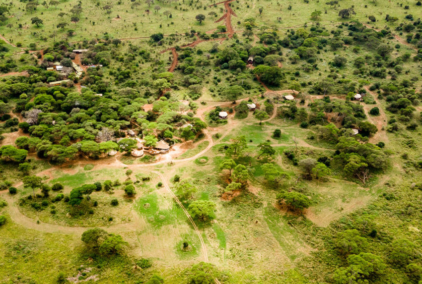 Swala-Tanzania-Tarangire-Aerial