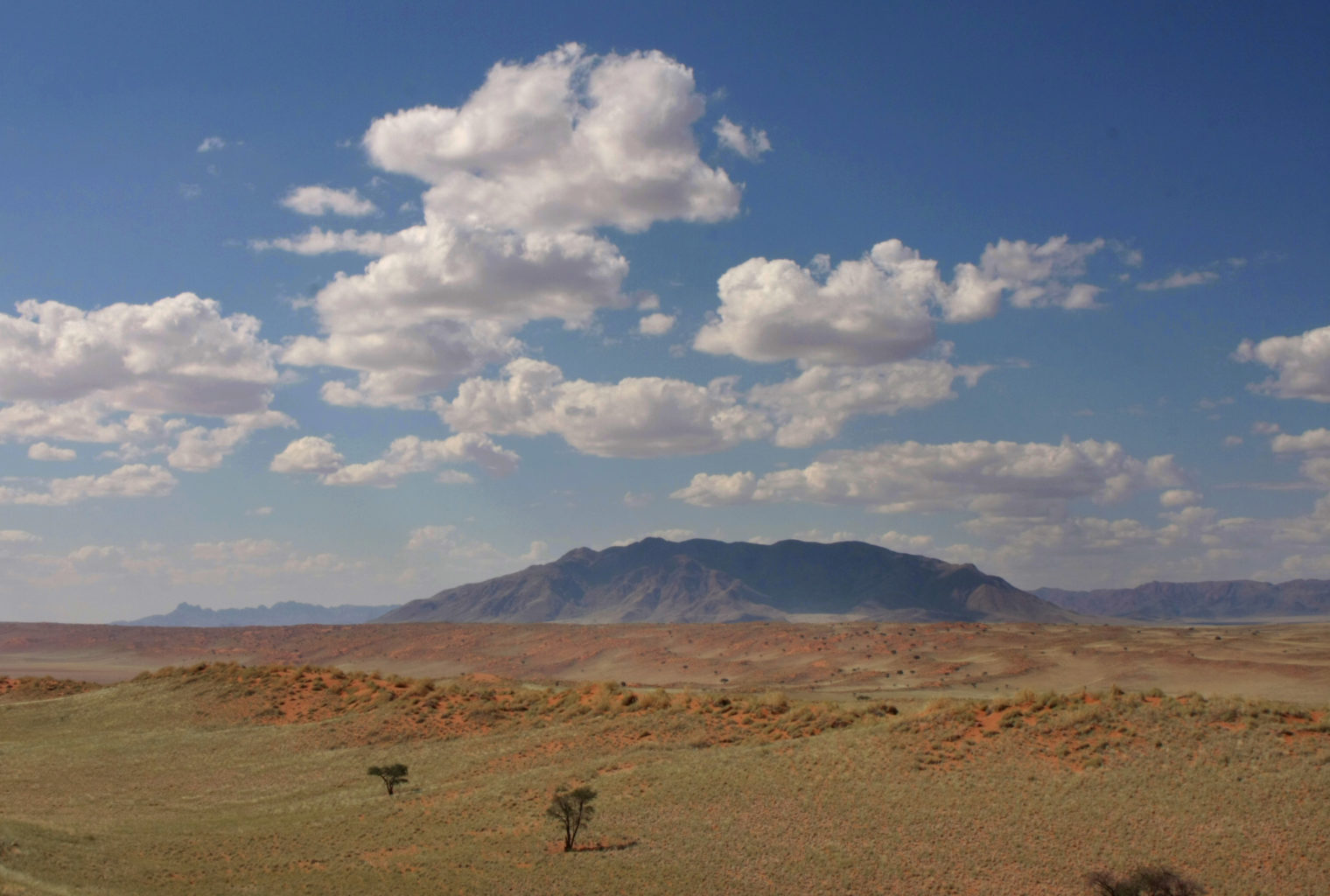 Tok Tokkie Trails Namibia Landscape