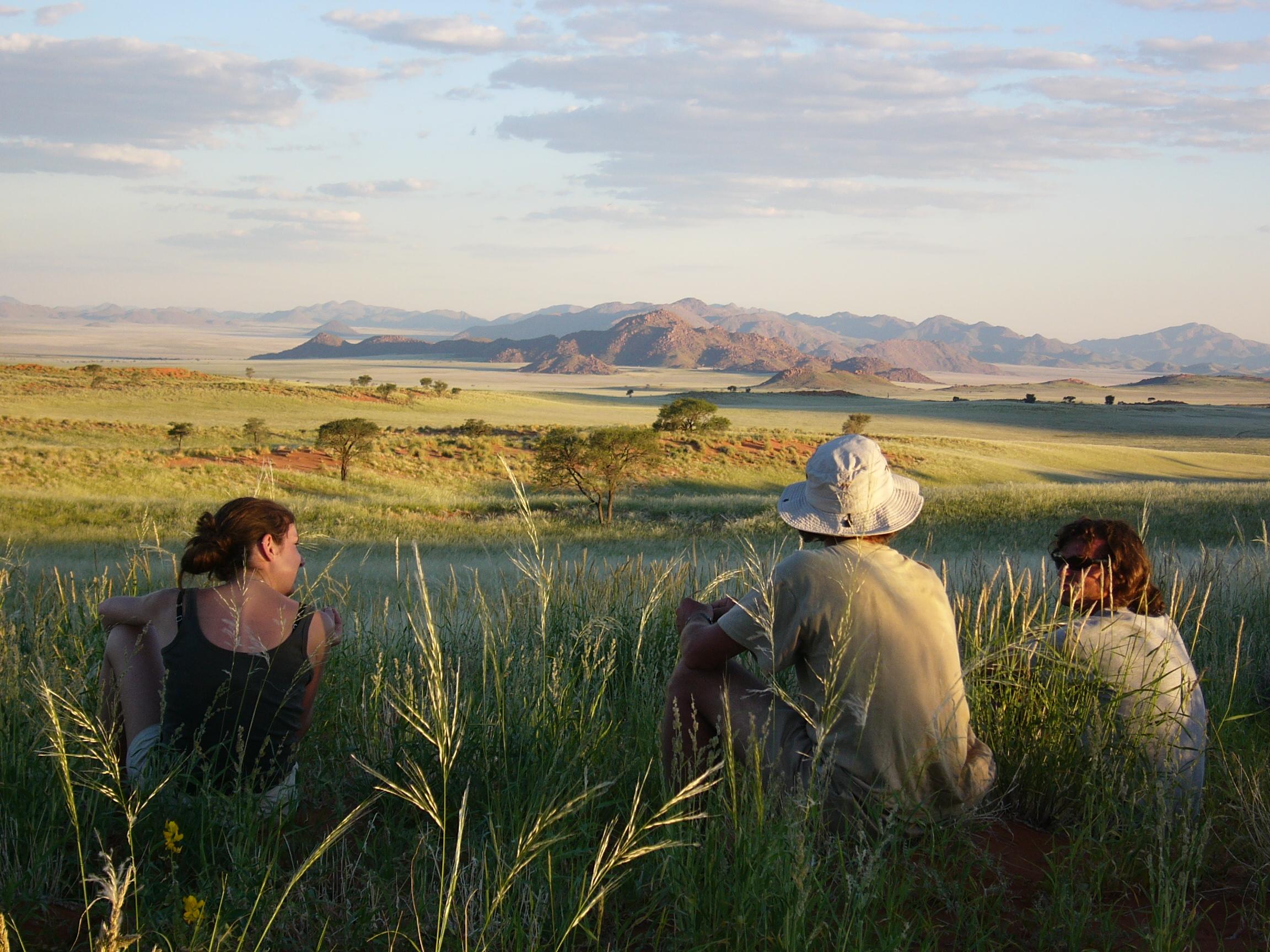 Tok Tokkie Trails Scenery Namibia