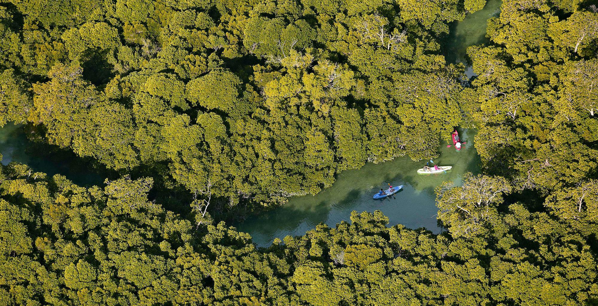 Mozambique-Quirimbas-Archipelago-Kayaking-Aerial