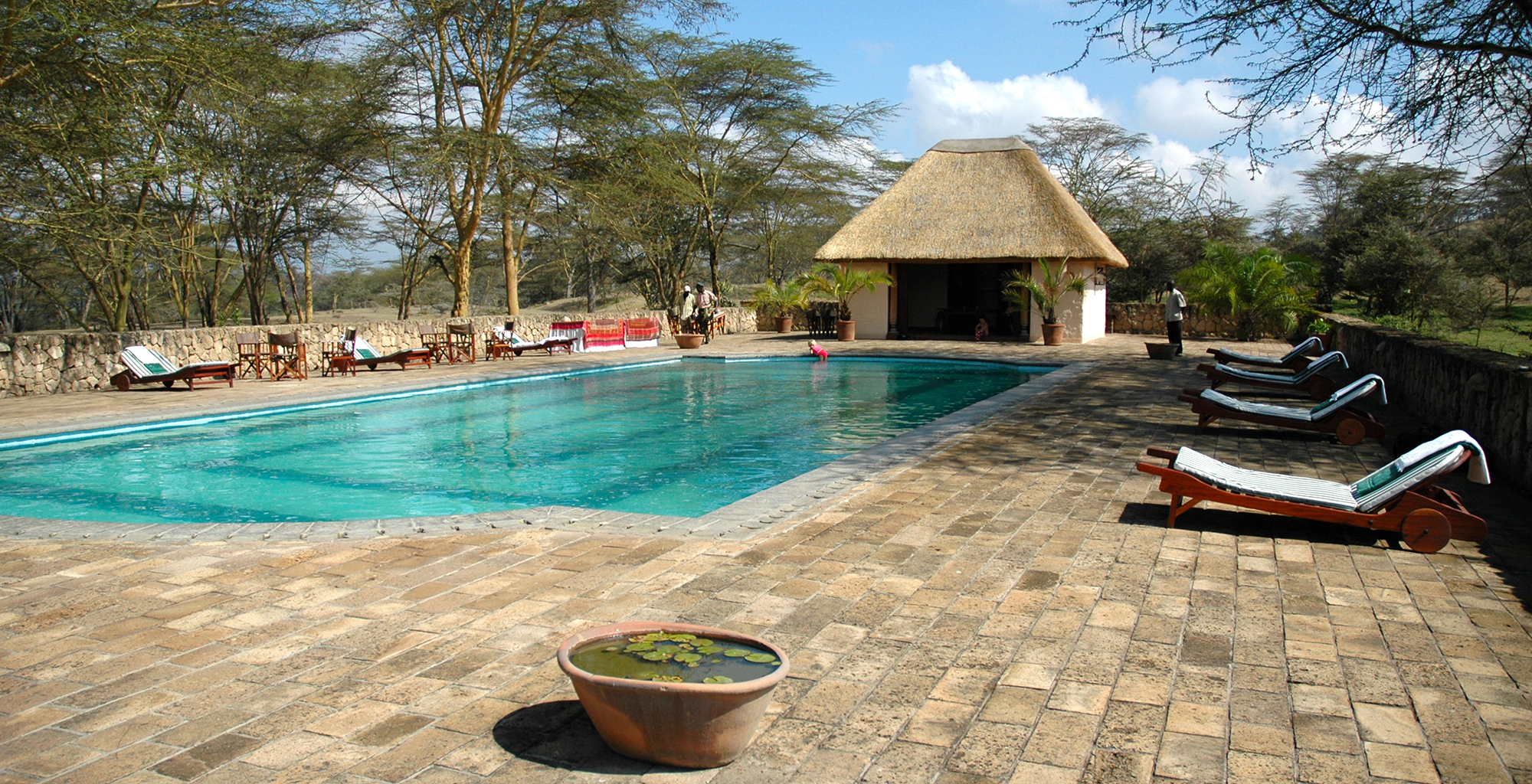 Kenya-Hippo-Point-Tower-Swimming-Pool