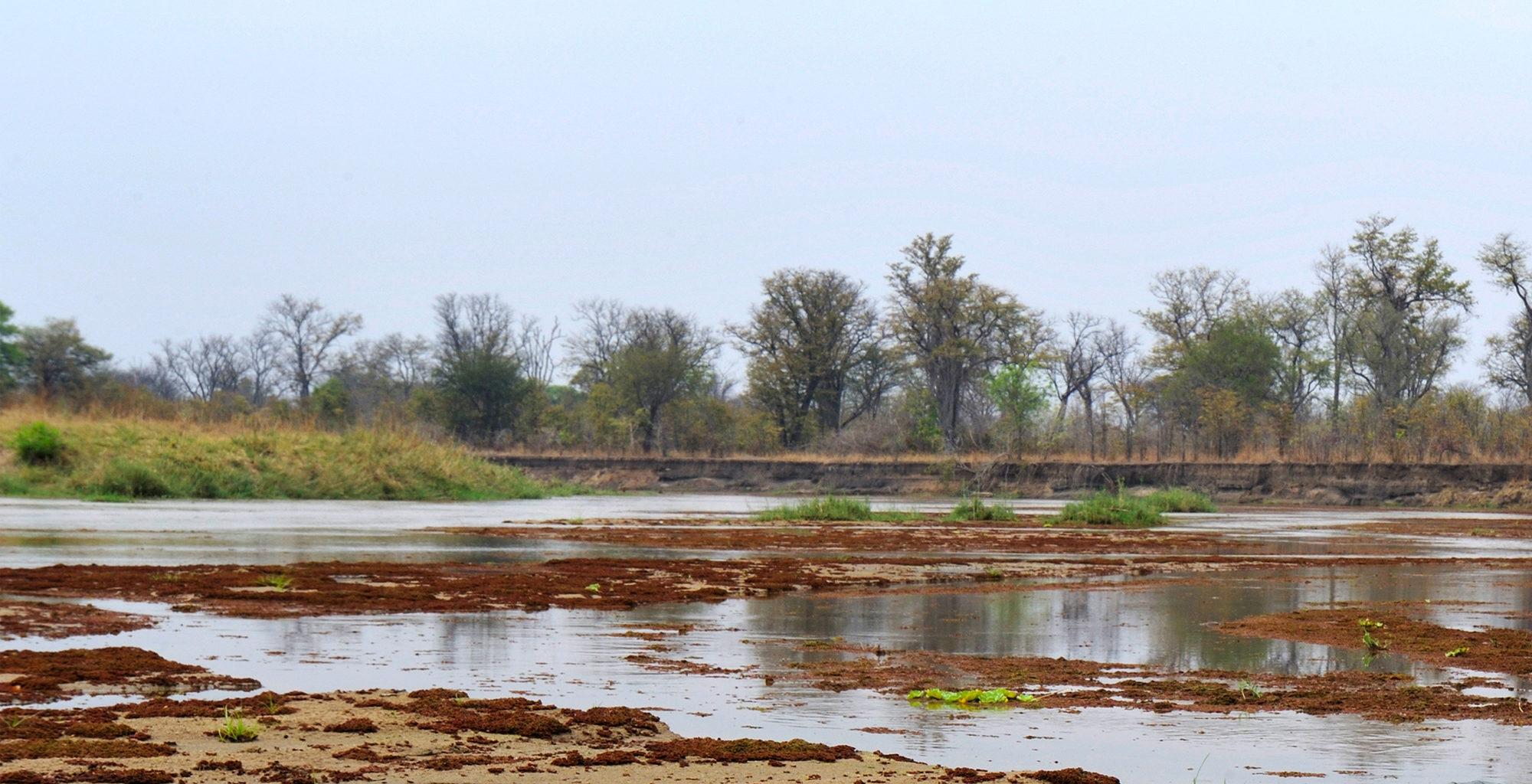 Zambia-North-Luangwa-Landscape