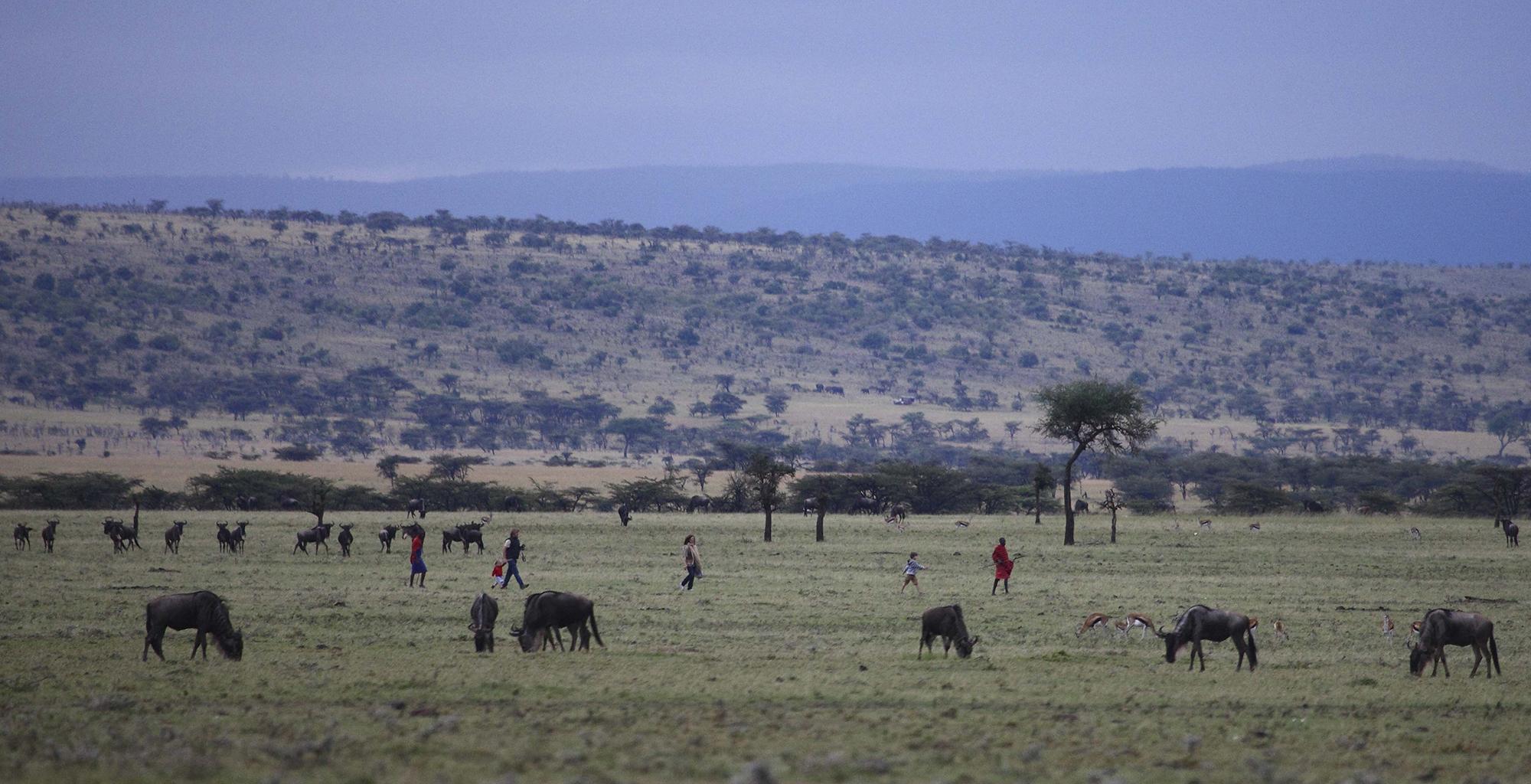 Kenya-Richard's-River-Camp-Wildlife-Landscape