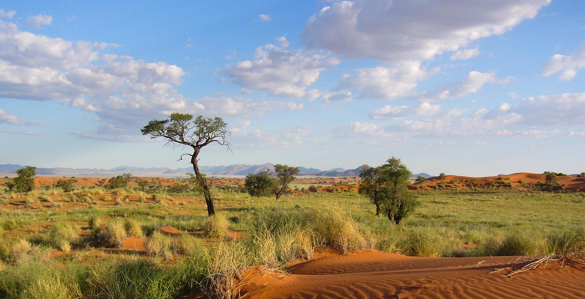 Namibia-NamibRand-Reserve-Landscape