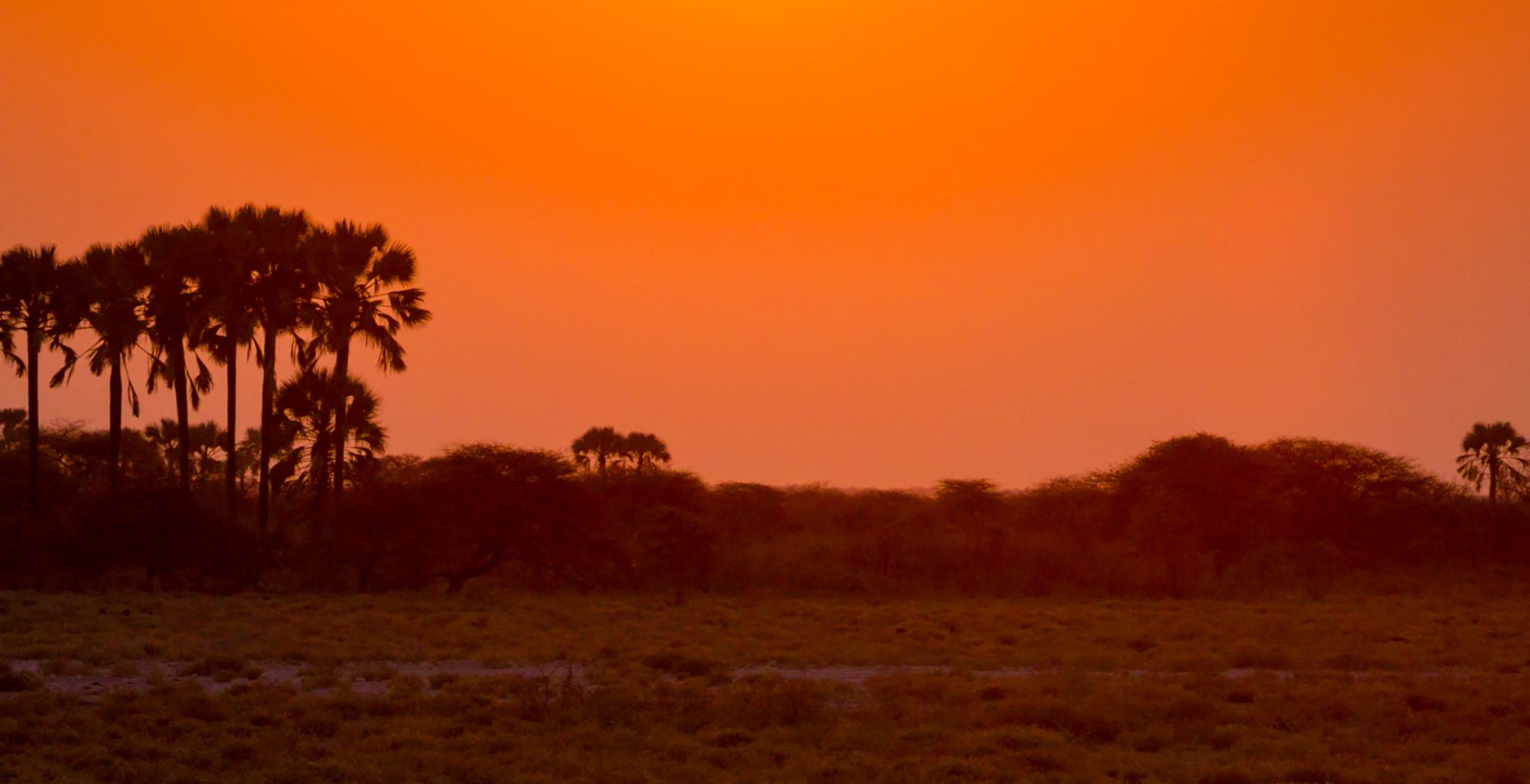 Namibia-Etosha-National-Park-Sunset
