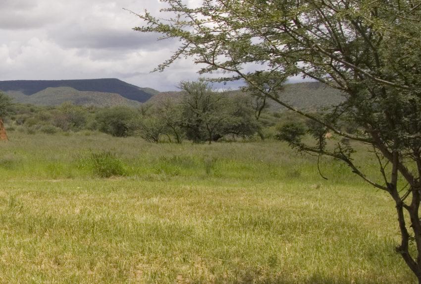 Namibia-Okonjima-Landscape
