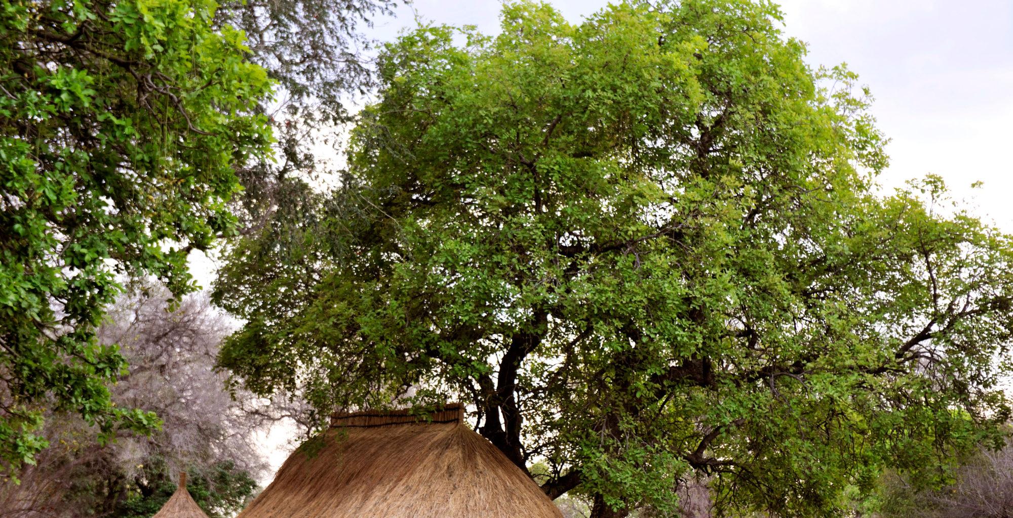 Tafika-camp--Zambia-exterior