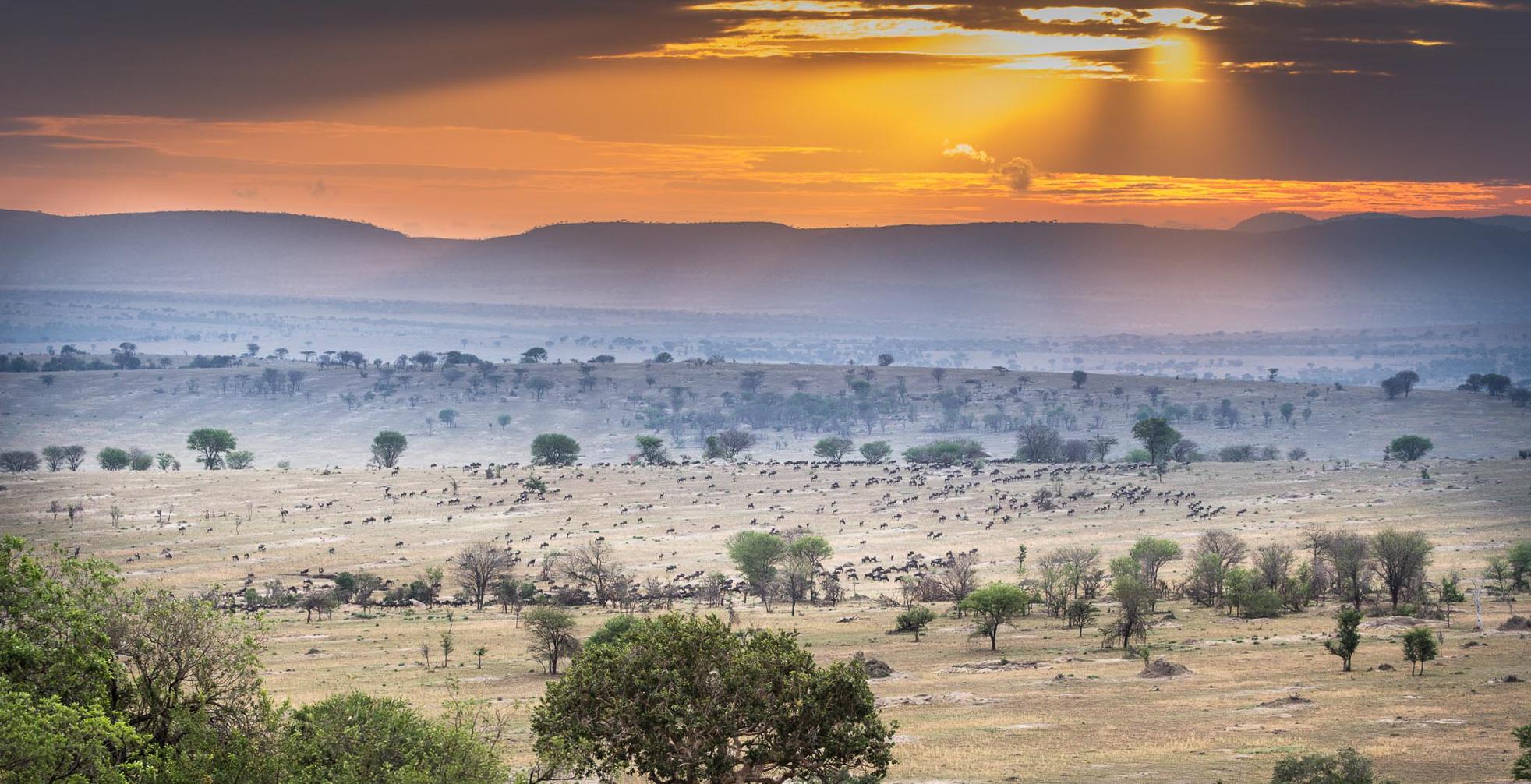 Legendary Expeditions - Tanzania