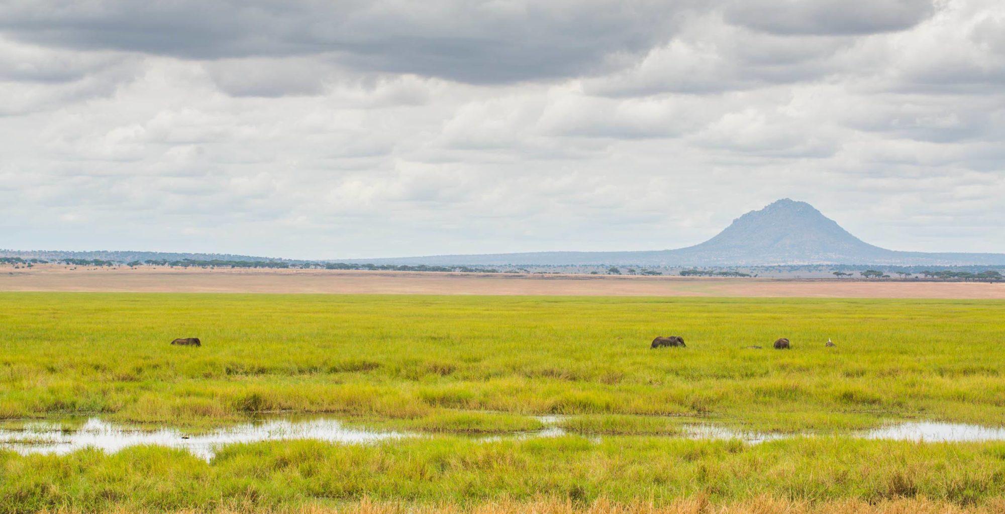 Tanzania-Tarangire-Landscape