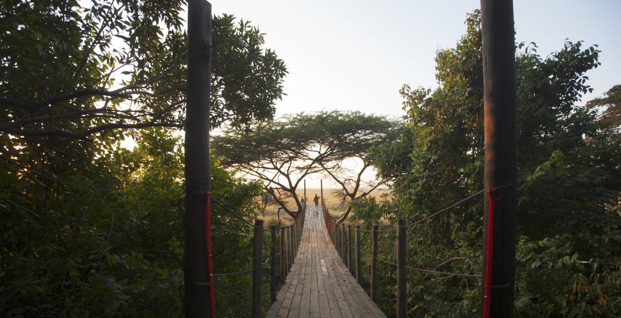 Mara Plains Camp Bridge by Beverly Joubert
