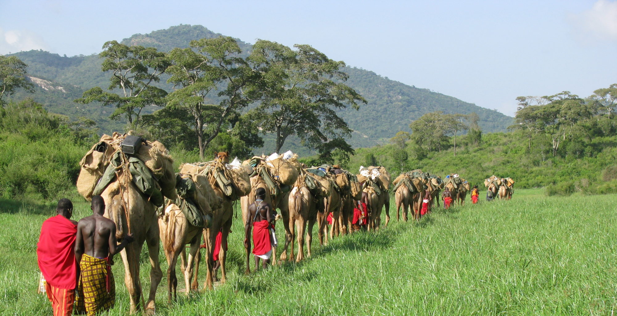 Karisia Safaris Camel Walk