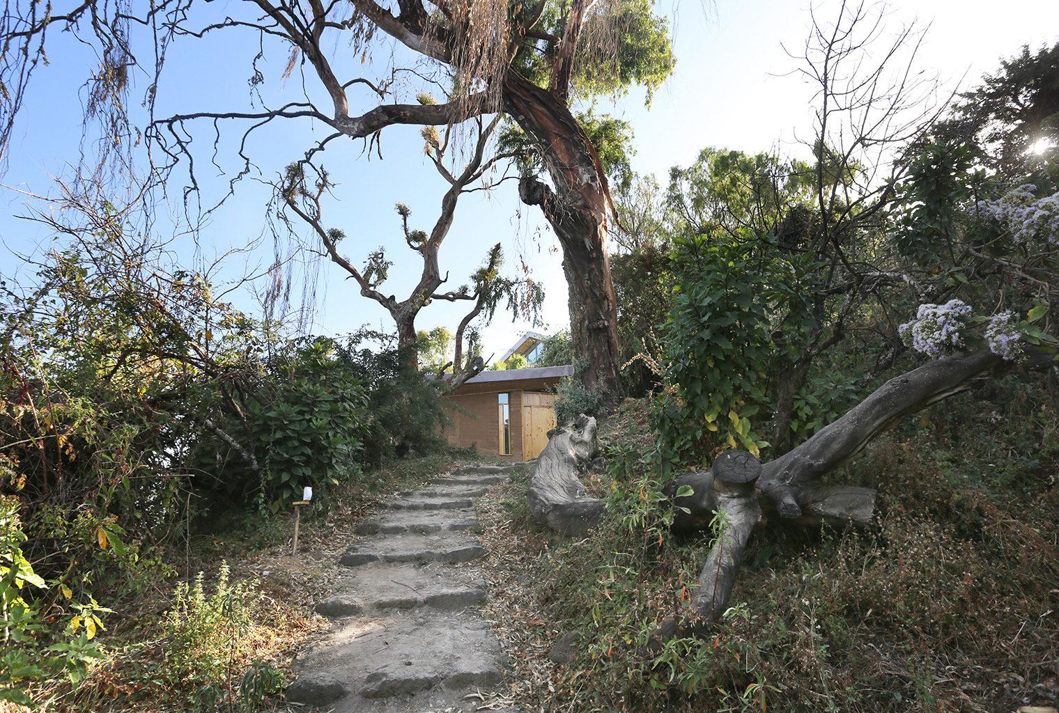 Limalimo-Lodge-Ethiopia-Exterior-Walkway