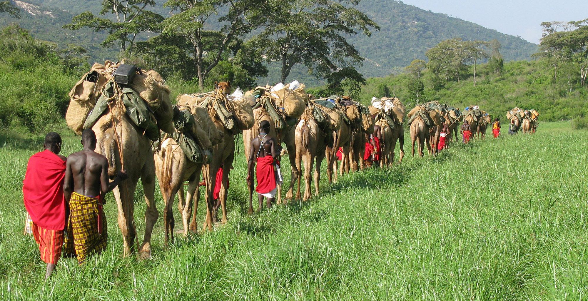 Kenya-Karisia-Safaris-Camel-Safari