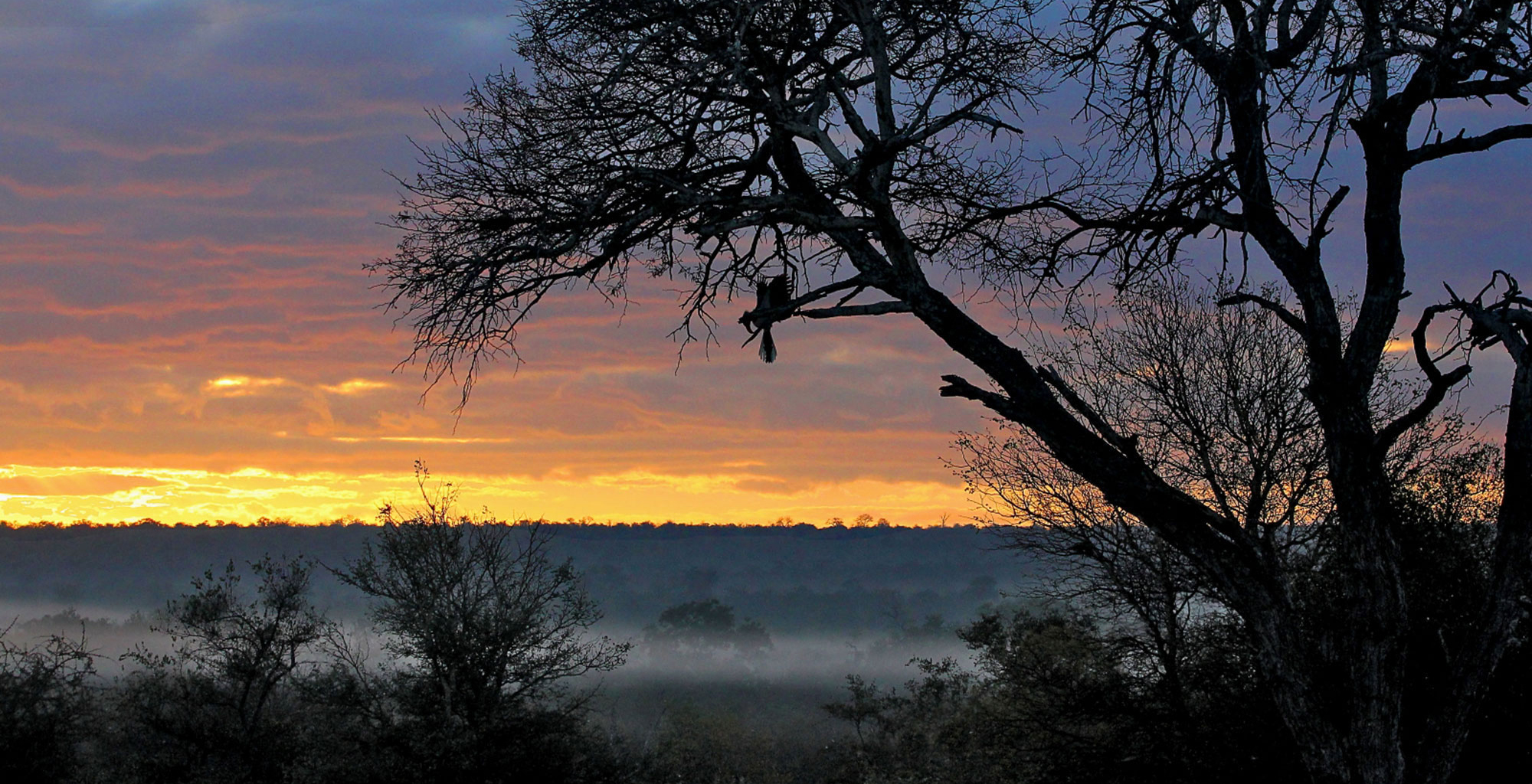 South-Africa-Tanda-Tula-Field-Camp-Sunset-View