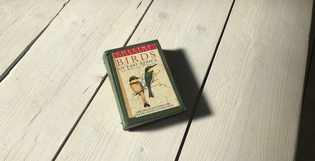 Birds-Blog
