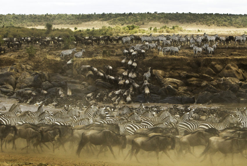 Mara Expedition Camp Migration