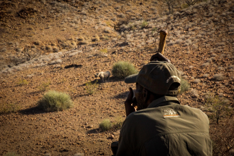 Rhino Tracking with --Huab Rhino Rangers