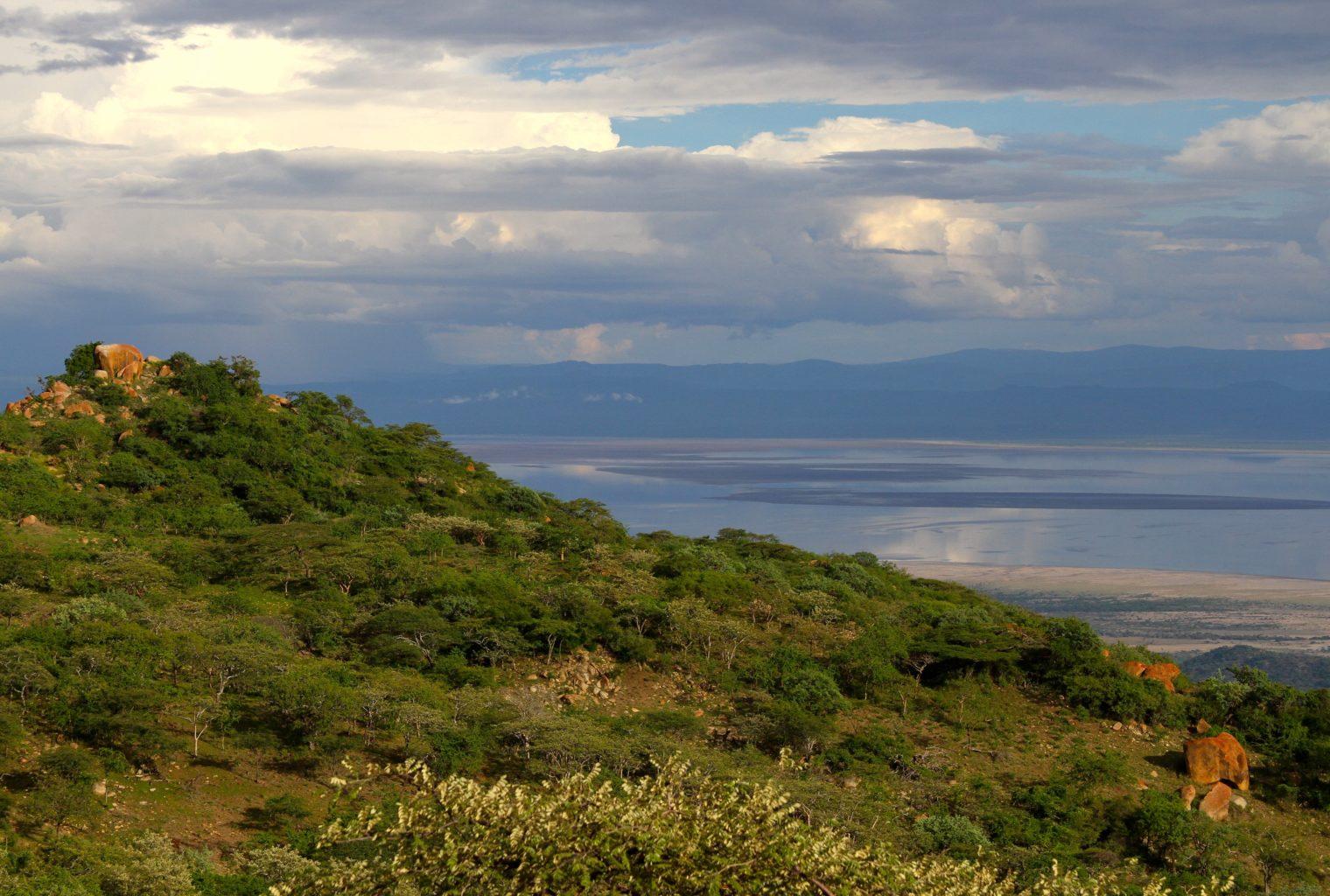 Mwiba Tented Camp Tanzania Landscape
