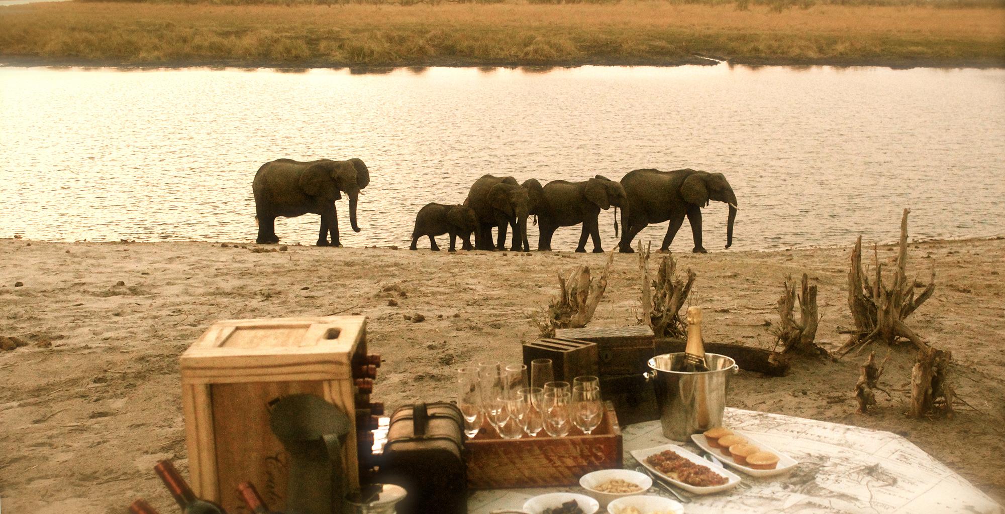 Namibia-Nambwa-Lodge-Sundowner-Elephants