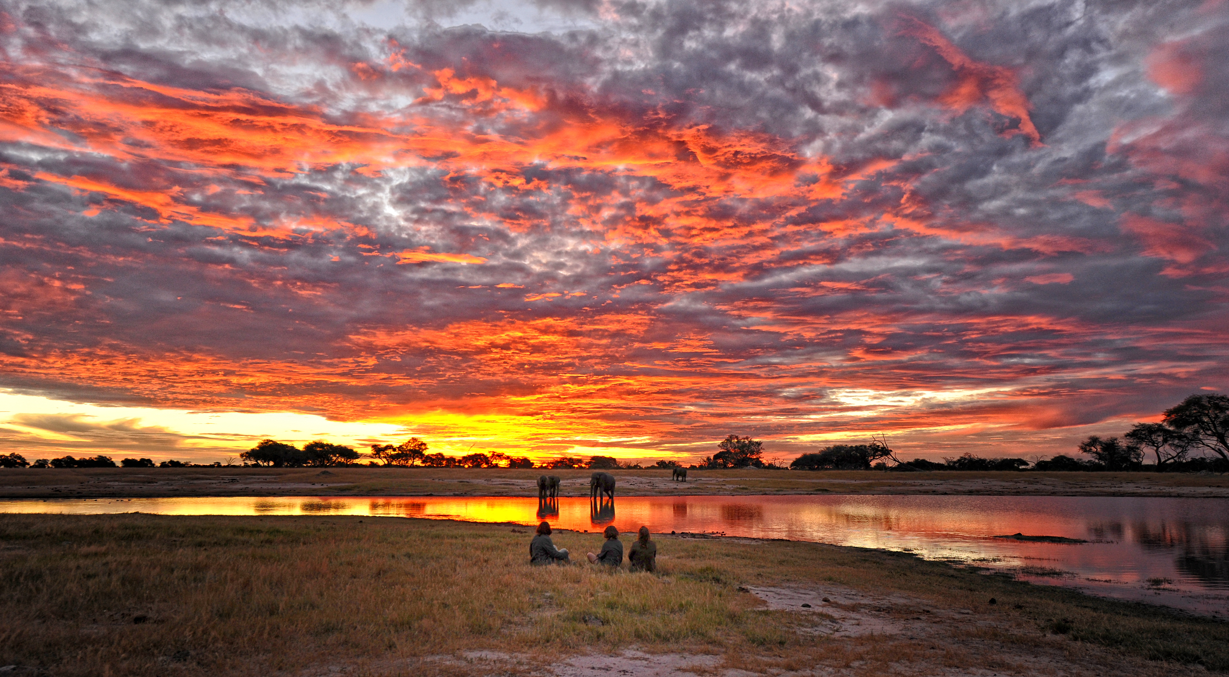 Somalisa Expeditions Hwange Zimbabwe Sunset