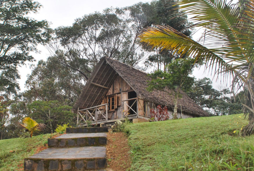 Eulophiella-East-Madagascar-Exterior