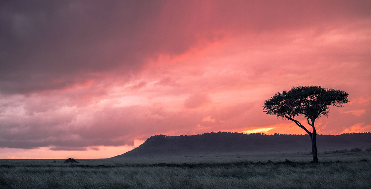 Maasai Mara at Sunset
