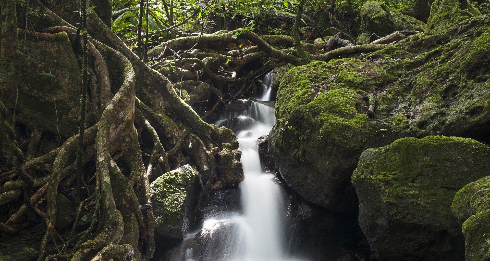 Madagascar-Waterfall