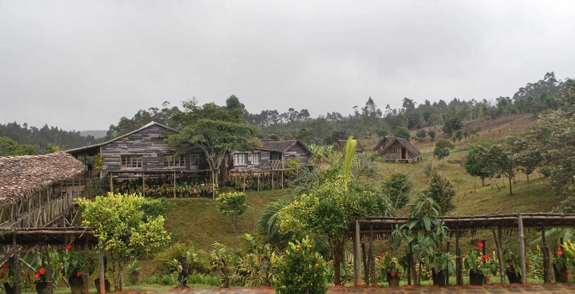 Eulophiella East Madagascar Exterior