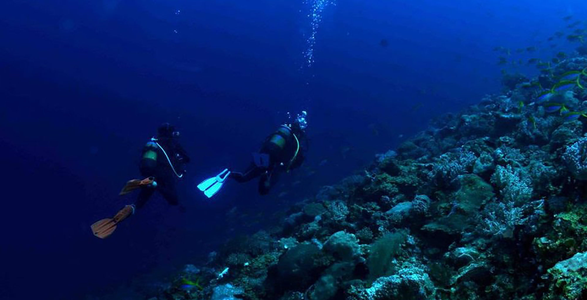 Madagascar-Sakatia-Scuba-Diving