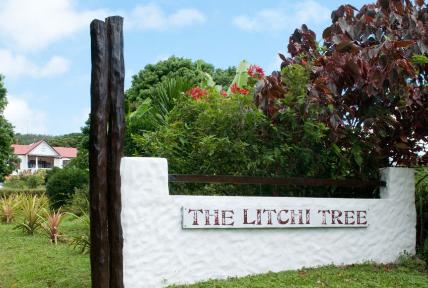 Litchi-Tree-Exterior-North-Madagascar