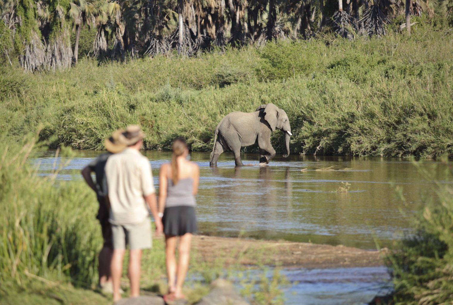 Walking the wilds of Ruaha