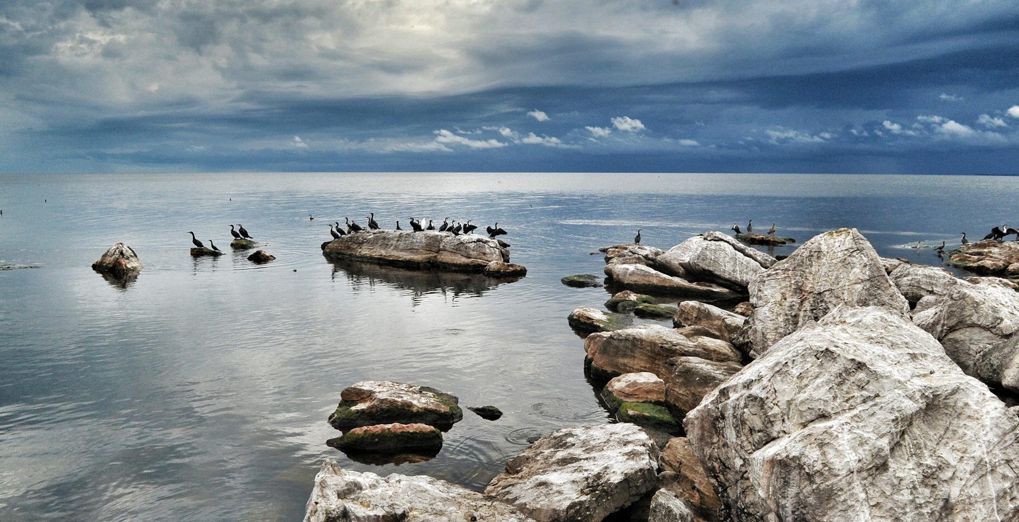Tanzania-Rubondo-Island-Victoria-Lake