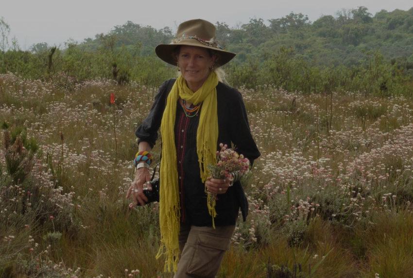 Anne-Powys-Botanical-Safaris