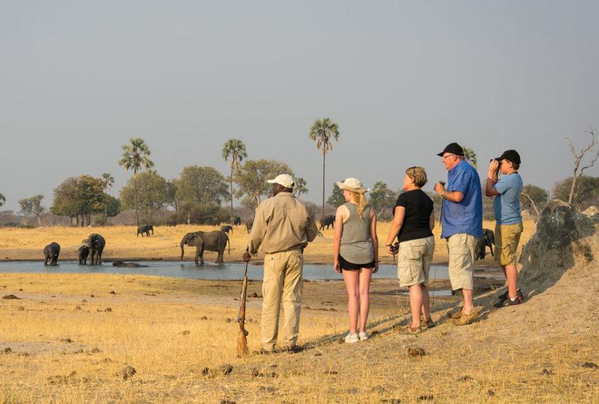 Zimbabwe-Guides-April-Experience