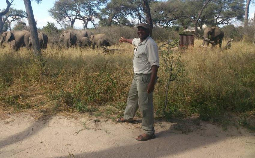 Calvet-Nkomo-Zimbabwe