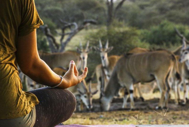 Ol-Donyo-Wild-Studio-Yoga