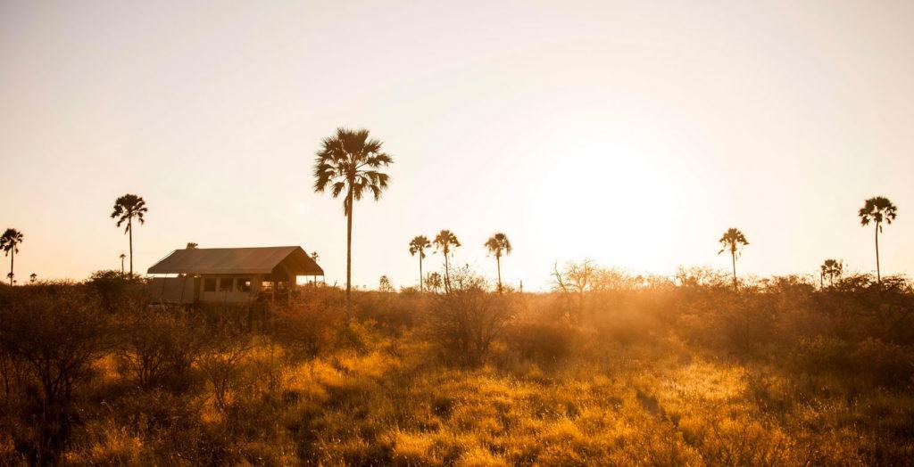 1Camp-Kalahari---Guest-tent