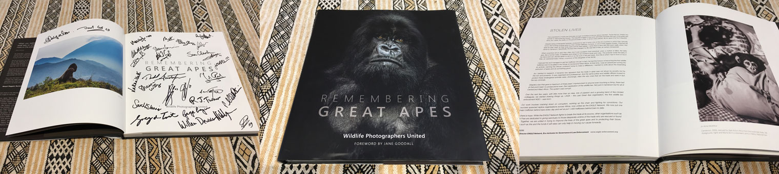 Great-Apes-Book