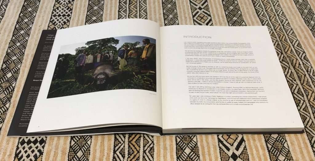 Rembering Great Apes Book