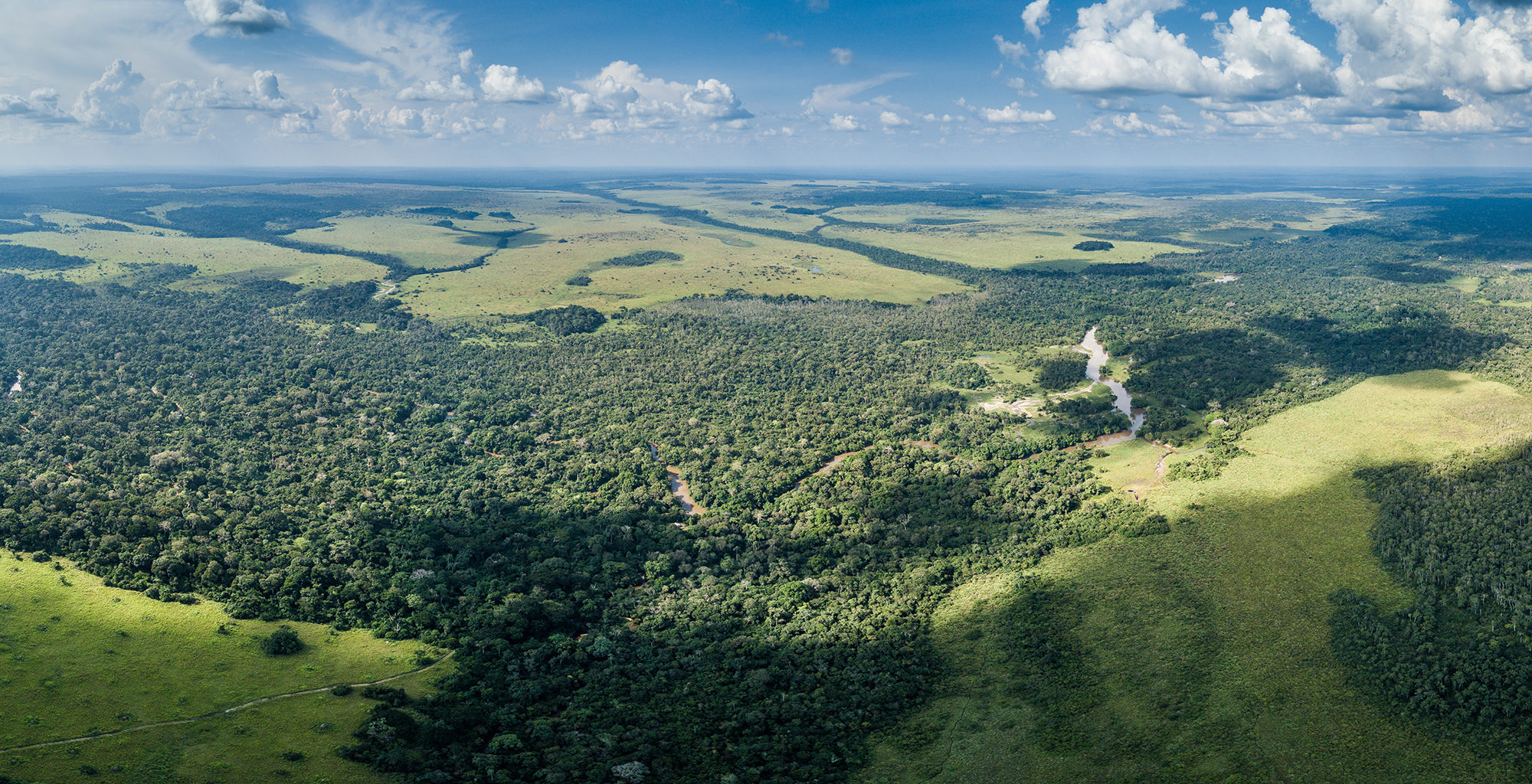 Republic-of-Congo-Odzala-Aerial