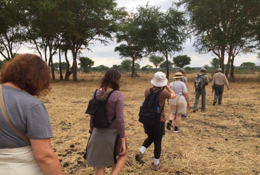 Jess safari Tanzania
