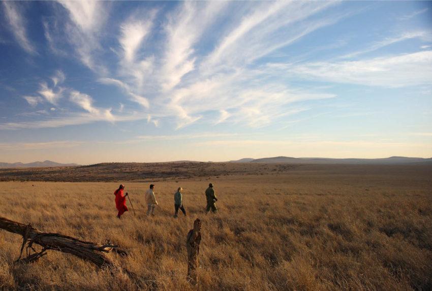 Lewa Safari Camp - Bush Walk